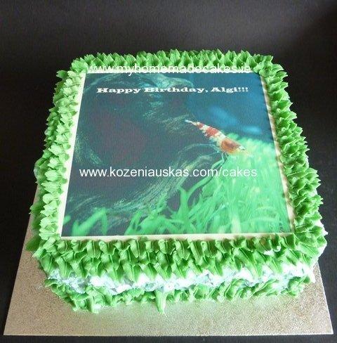 srimp cake