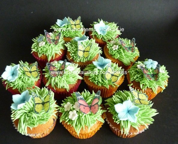Curd cupcakes with blueberies