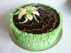 Chocolate Lily cake