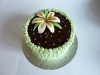 Lilly cake