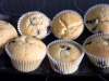 curd cupcakes with blueberries.