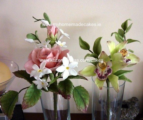 Rose and Orchid cymbidium
